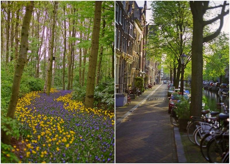 Amsterdam-037 copy