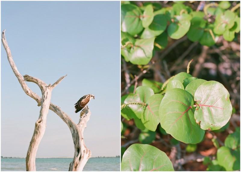 Florida-blog-036