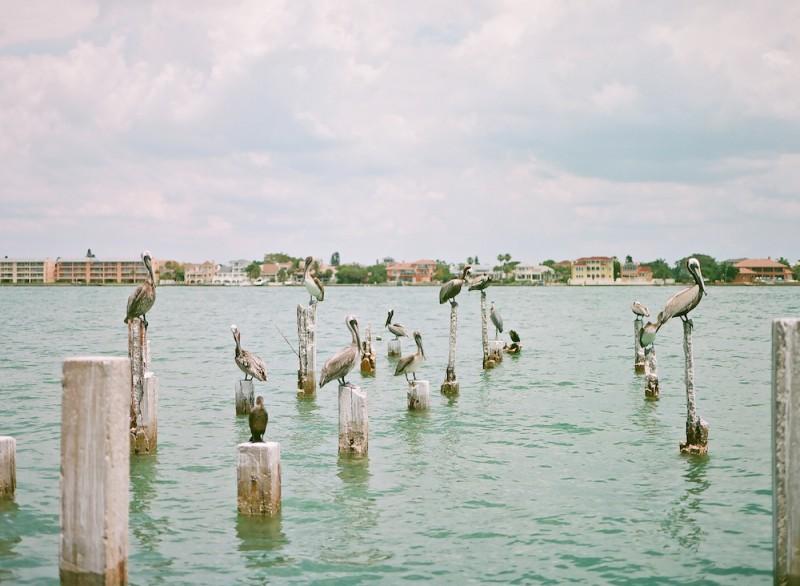 Florida-blog